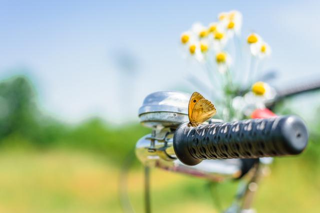 想談一場盛夏之戀?先來看看你的農曆6月感情運